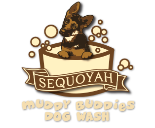 Sequoyah Muddy Buddies Dog Wash